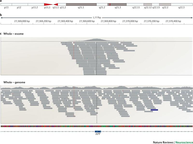 pics/exome_genome.jpg